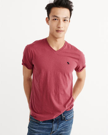 ANF Icon V-Neck Tee