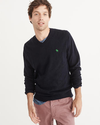 ANF Icon V-Neck Sweater