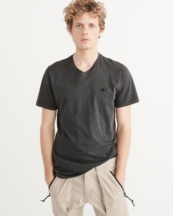 ANF Garment Dye V-Neck Icon Tee