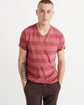 ANF Bold Stripe Icon V-Neck Tee