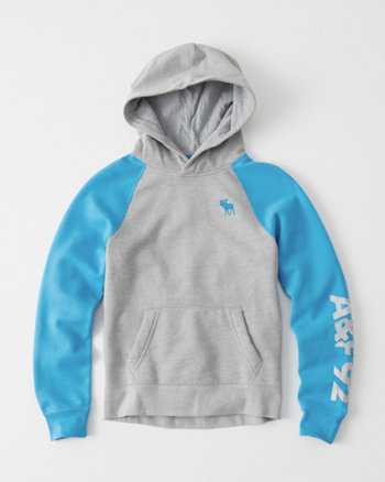 kids Logo Graphic Icon Hoodie
