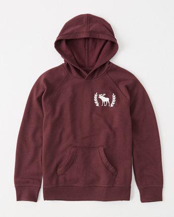 kids shine graphic hoodie